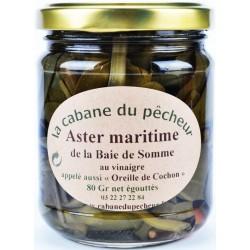 Aster Maritime de la Baie de Somme au vinaigre